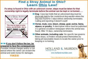 If you have found a stray animal, s/he should be taken to the shelter closest to the location where the animal was found. This will increase the likelihood that the animal will be reunited with its guardian and safely returned home. If you can′t find a shelter listed, you should call information and see if there is a humane society or SPCA in your area. If that doesn′t work, the best bet is to call the local police or sheriff department and ask where they take stray animals. Often it will be your local shelter and they should be able to provide contact information.