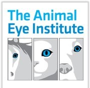 The Animal Eye Institute