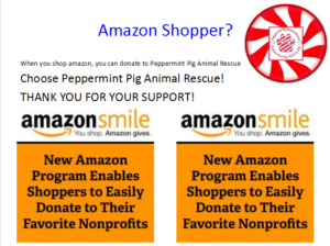Donate - Peppermint Pig Animal Rescue