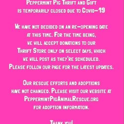 Peppermint Pig Thrift and Gift is Temporarily Closed