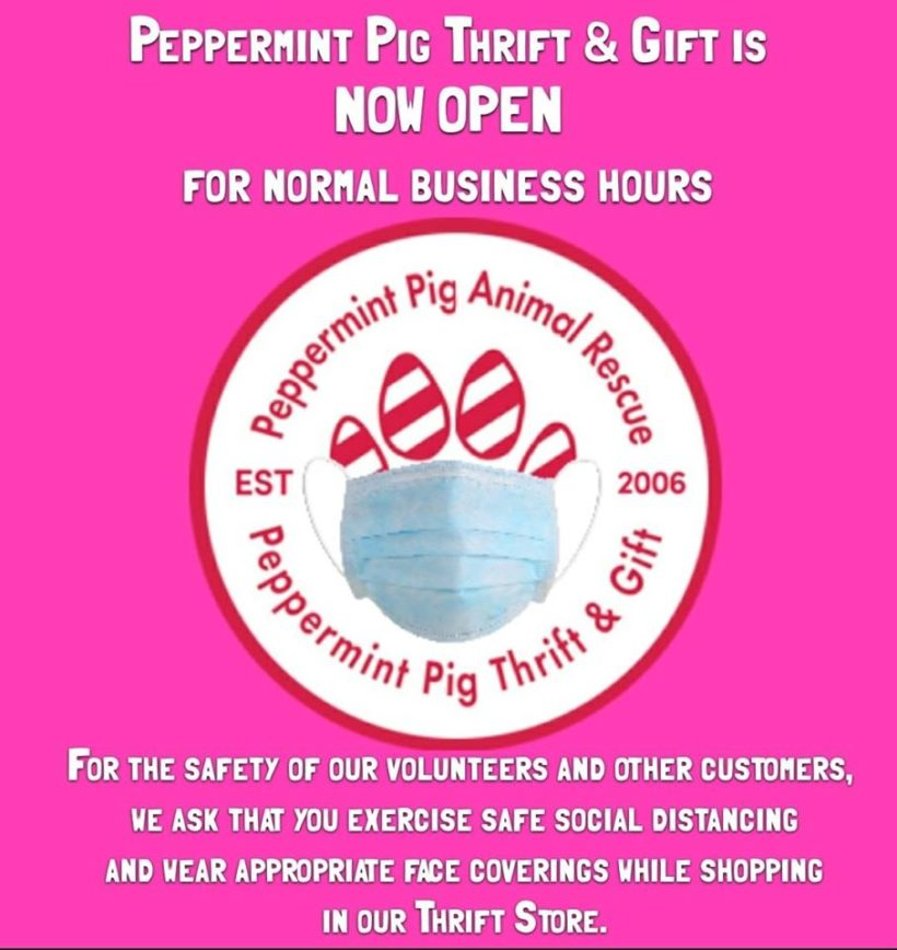 PEPPERMINT PIG THRIFT AND GIFT IS NOW OPEN FOR NORMAL BUSINESS HOURS